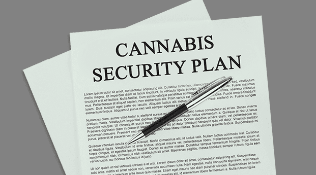 Cannabis Security Plan (3)